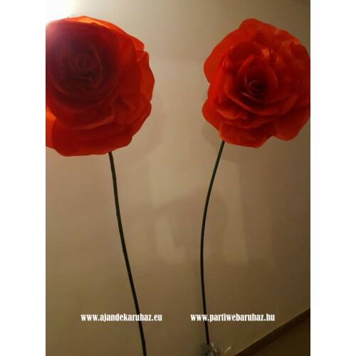 Óriás rózsa virág szárral