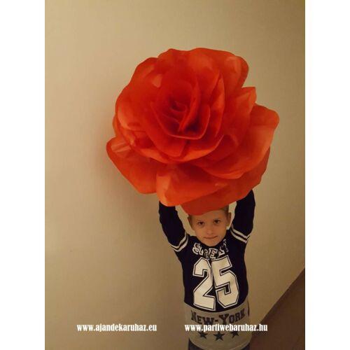 Piros óriás rózsa virág fej