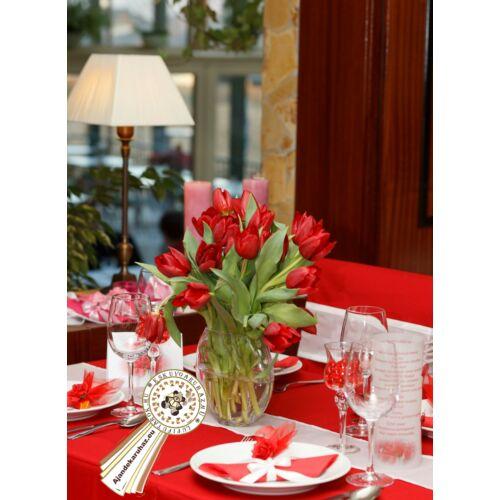 Piros Tulipán mintás Menü és Itallap